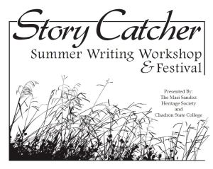 StoryCatcherWorkshop