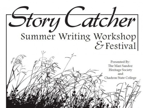 cropped-storycatcherworkshopnologosmall1.jpg